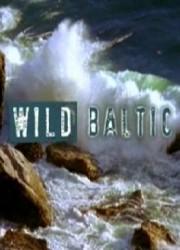 Дикая природа Балтики (2009)