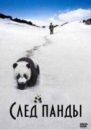 След панды (2009)