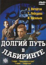 Долгий путь в лабиринте (1981)