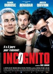 Инкогнито (2009)