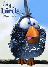 О птичках (2000) смотреть онлайн в хорошем качестве