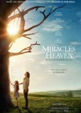 Чудеса с небес (2016) смотреть онлайн в хорошем качестве